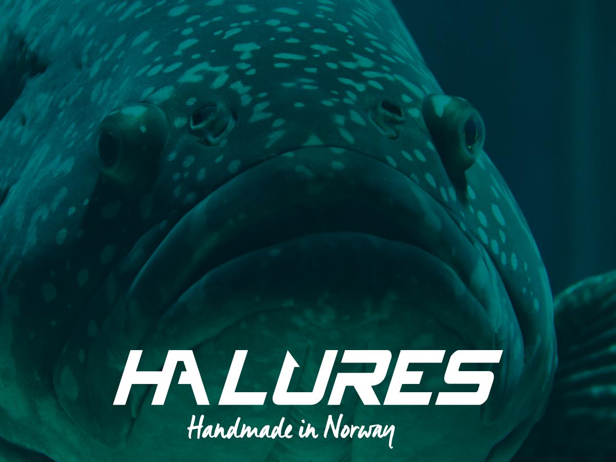 Kudos media logo for HA lures wobbler